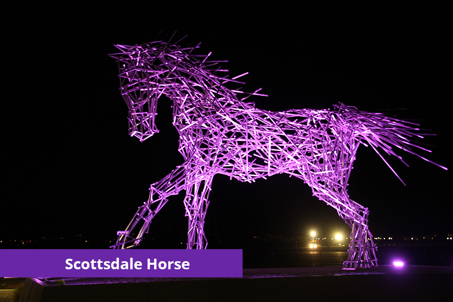 The Scottsdale Horse Domestic Violence Awareness Month
