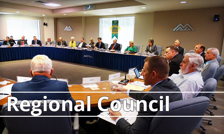 Regional Council Activity Report