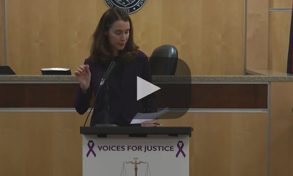 2014 Domestic Violence News Conference